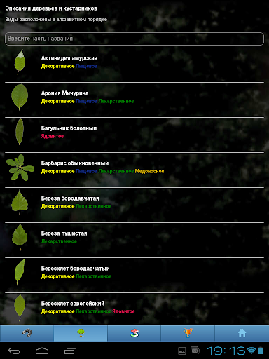 EcoGuide: Trees in Summer - screenshot