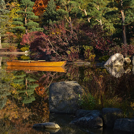 Mirror Like Pond by Robert Coffey - Landscapes Waterscapes ( water, row boat, reflections, trees, rocks, pond )