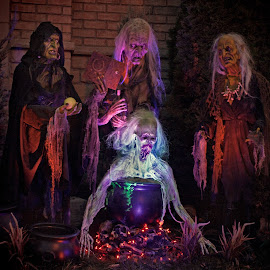 Witches by Carl Chalupa - Public Holidays Halloween ( witch, witches cauldron, halloween,  )
