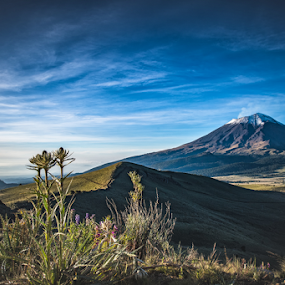 volcano with the mountain rose by Cristobal Garciaferro Rubio - Landscapes Mountains & Hills ( soy volcano, popo, mexico, popocatepetl, morning )