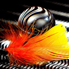 Crystal ball with feather by Renata Ivanovic - Artistic Objects Glass ( ball, colorful, crystal, feathers, close up,  )