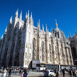 Milan Cathedral  by David Ramsay - Buildings & Architecture Architectural Detail