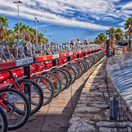 by Tracey Dolan - Transportation Bicycles