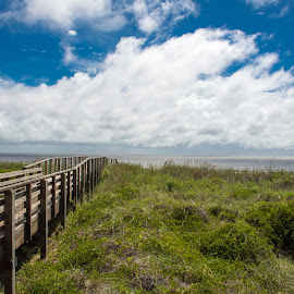 Path to The Coast by Thomas Shaw - Landscapes Beaches ( clouds, water, atlantic ocean, green, white, ocean, beach, landscape, photography, coast, north carolina, sky, blue, path, walkway, brown )