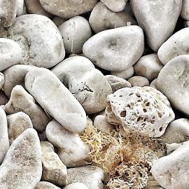 Rock my world by Andreja Svenšek - Nature Up Close Rock & Stone ( shore, patterns, pattern, zen, seaside, stones, rocks )