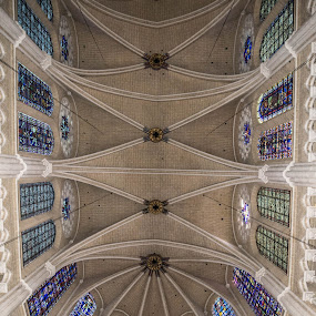 Chartres Cathedral by Denis Sinoussi - Buildings & Architecture Public & Historical ( roof, voute, church, chartres, cathedral, vitraux )