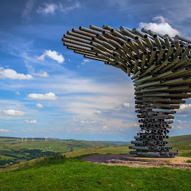 The Singing Ringing Tree by Alan Brelsford - Buildings & Architecture Statues & Monuments ( sunset, lighthouse, singing ringing tree )