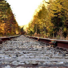 Tracks by Andy Bigelow - Transportation Railway Tracks ( #adirondacks, #lakeplacid, #autumn, #railroadtracks, #fall )