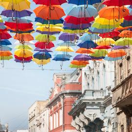 Umbrella by Maja Tomic - City,  Street & Park  Street Scenes ( street, umbrella, man )