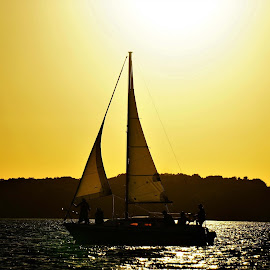 Half Sun by Jeff Murphy - Sports & Fitness Watersports ( #sailing #sailboat #boat #sun #sunset )