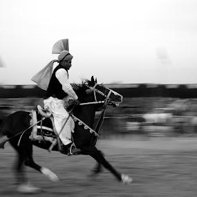 Tent Pegging by Tahir Sultan - Animals Horses ( #tentpegging, #islamabad, #horse, #nokon,  )