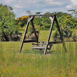 Wanna swing? by Priscilla Renda McDaniel - Artistic Objects Furniture ( 2 people, wooden, grass, swing, in field )