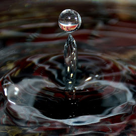 Water Drop by Sanjeev Kumar - Abstract Water Drops & Splashes (  )