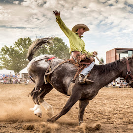 Queanbeyan Rodeo by Anthony Rutter - Sports & Fitness Rodeo/Bull Riding ( rodeo, queanbeyan )