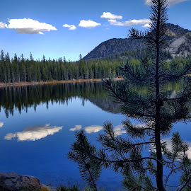 Anthony Lakes by D.j. Nichols - Instagram & Mobile Android ( anthony lakes )