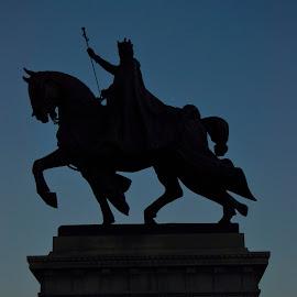 Knight by Majid Uppal - City,  Street & Park  Historic Districts
