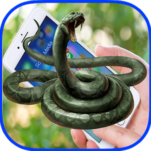 Download Snake On Screen For PC Windows and Mac