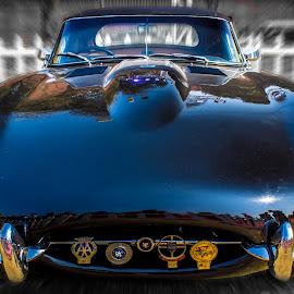 JAGUAR | 1961 by Nikhil Mace - Transportation Automobiles ( jaguar, car, vintage, transport, automobile )