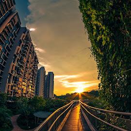 by Sam Song - City,  Street & Park  Neighborhoods