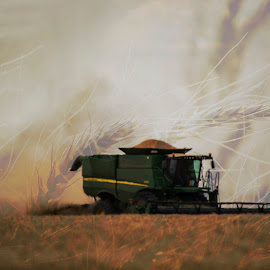 A panhandle harvest by Nathan Bezner - Transportation Other