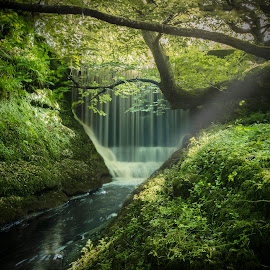 secret place by Graeme Lawson - Landscapes Waterscapes ( peaceful, tree, waterfall, forest, sunlight, sun rays, river )