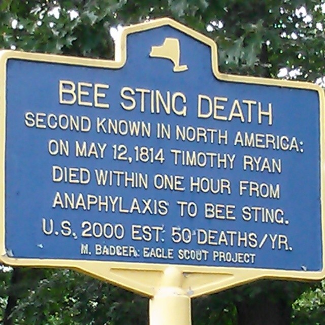 BEE STING DEATH Second known in North America On May 12, 1814 Timothy Ryan died within one hour from anaphylaxis to Bee Sting. U.S. 2000 Est. 50 deaths/yr. M. Badger: Eagle Scout Project Submitted by ...
