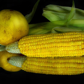 In the beauty of fresh corn and cucumber fruit.jpg