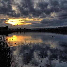 The Lake View 2 by Randi Hodson - Landscapes Sunsets & Sunrises ( clouds, water, sunset, lake )