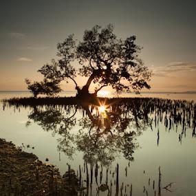 Reflection by Jeff Ponce - Landscapes Sunsets & Sunrises ( mindanao, fave, ©jcponce2013, chasing light, seascapes, sunrise, photo themes, landscapes, el salvador,  )