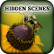 Hidden Scenes - My Little Bees 1.0.4 Apk