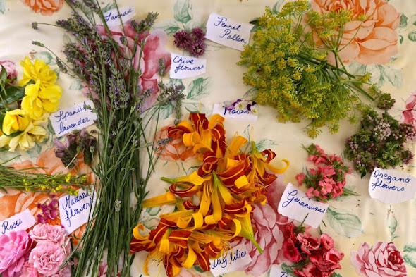 Secret Garden Club Edible flowers by The Underground Restaurant