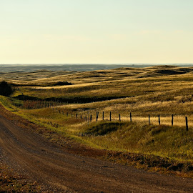 Road to Somwhere by Tim Day - Landscapes Prairies, Meadows & Fields ( sunset, saskatchewan, prairies, gravel road, roads )