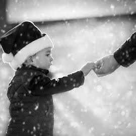 Alfie by Carrie McIntosh - Babies & Children Children Candids ( scotland, snow, christmas, candid, toddler )
