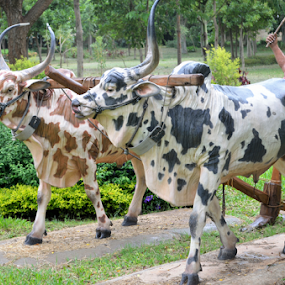 Farmer by Diliban P - Artistic Objects Other Objects ( park, farmer, wax, cow, artistic objects )