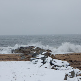 Angry Sea in the Snow Storm by Kristine Nicholas - Novices Only Landscapes ( splash, waterscape, rocky, seagulls, ocean, rock, beach, storm, landscape, atlantic, birds, gull, cold, snow, weather, wet, rock formation, rocks, water, rock wall, sand, waves, sea, snowy, water birds, seabird, beachscape, water bird, snowing, bird, footprints, seabirds, seagull, winter, splashing, landscapes, wall )