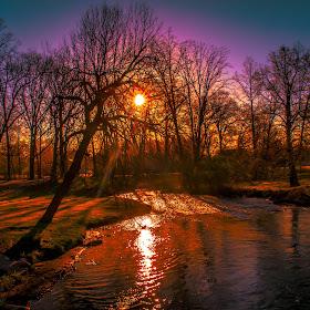 Paint Creek Sunsplash Behind Tree April.jpg