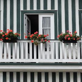 Balcony by Ana Paula Filipe - Buildings & Architecture Homes ( green, bech, house, stripes, balcony )