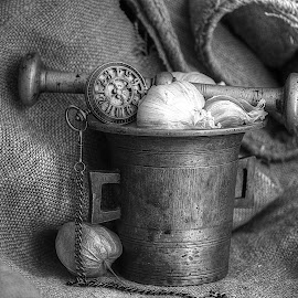 by Biljana Nikolic - Black & White Objects & Still Life