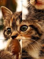 Screenshot of Puzzli - Incredible Puzzle Fun