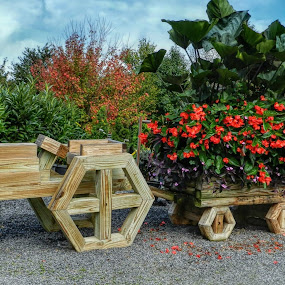 Wagon And Flowers by Karen Carter Goforth - Uncategorized All Uncategorized ( wooden, decoration, wagon, flower,  )