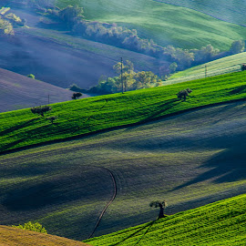 Hills by Emanuele Zallocco - Landscapes Mountains & Hills ( hill, hills )