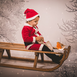 Santa Baby by Vix Paine - Babies & Children Child Portraits ( xmas, backdrops, christmas, rustic christmas, christmas card, rustic, colour, robin, santa, tree, magical, christmas backdrop, snow, toddler, , Christmas, card, Santa, Santa Claus, holiday, holidays, season, Advent )