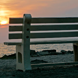Front Row Seat by Harry James - Artistic Objects Other Objects ( coastal georgia, golden isles, bench, sunrise, beach, jekyll island )