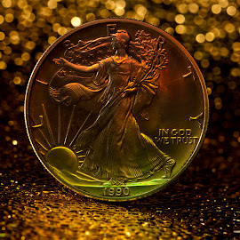 Walking Liberty by Joseph McKee - Artistic Objects Still Life ( liberty, money dollar, coin, silver, dollar, currency,  )