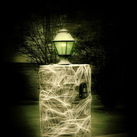 Creepy Street Lamp by Karen Carter - Public Holidays Halloween ( haunting, spooky, lamp, web, glowing, halloween )