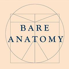 Bare Anatomy, ,  logo