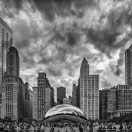 Chicago by Péter Mocsonoky - Buildings & Architecture Office Buildings & Hotels ( urban, building, america, states, architecture, chicago, big, usa, city )