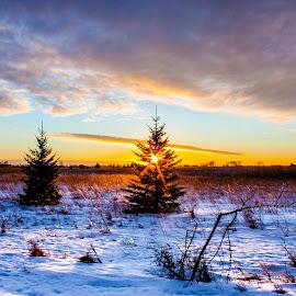 Pine Ridge Sunet by Chris Olson - Landscapes Prairies, Meadows & Fields