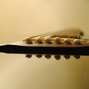 strings of sorrow by Moin Ally - Artistic Objects Other Objects ( bangladesh, long shutter, chrome, depth of field, strings, guitar, dof, nikon, bokeh, slow shutter, dhaka )