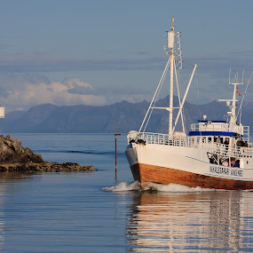 Whale Safari Andenes by Kenneth Pettersen - Transportation Boats ( turistmagnet, andenes, safari, whale, norway )